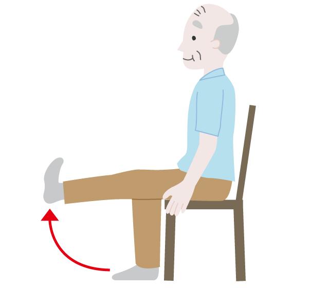 ふくらはぎ、膝の筋肉を強くする体操