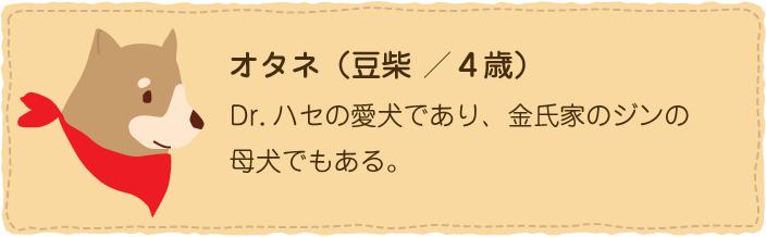 オタネ(豆柴)